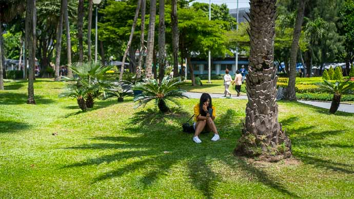 Chatuchak Discovery Garden begins on the northern edge of Chatuchak Markets, making it perfect for weary shoppers looking to chill out in the shade